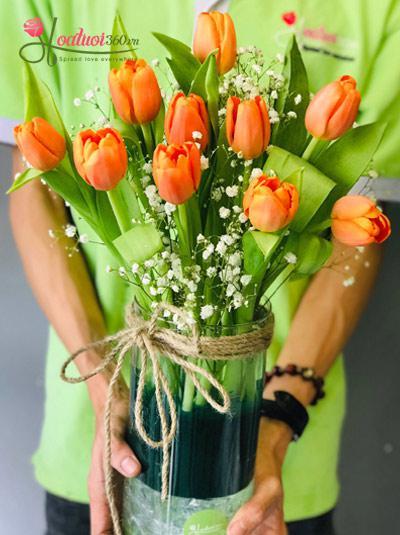 Bình hoa Tulip cam - Toả nắng