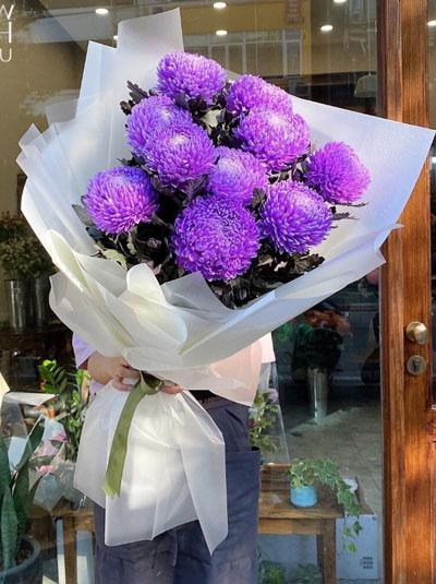 Bó hoa cúc mẫu đơn tím