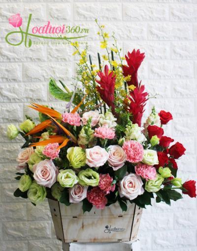 Hoa chúc mừng- yêu thương và hạnh phúc