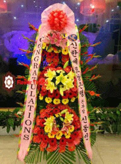 Kệ hoa khai trương Hàn Quốc - Sắc màu nổi bật
